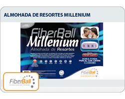 Almohada  Milenium 0,70 x 0,50 x 10