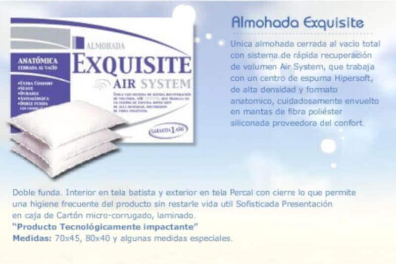 Almohada Exquisite 0,70 x 0,40 x 10